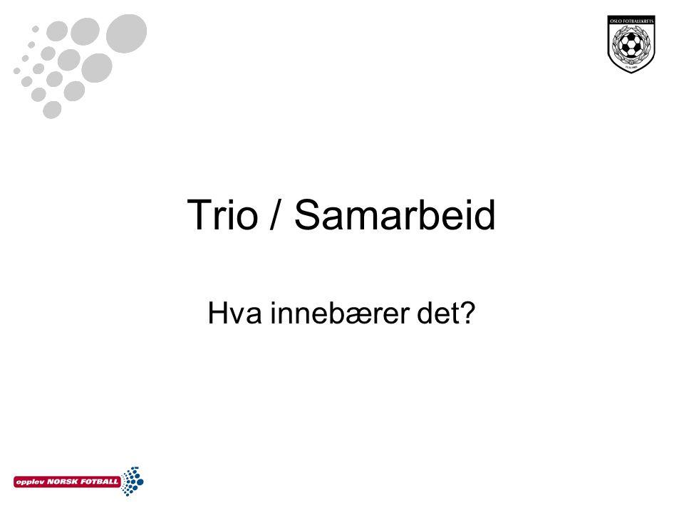 Trio / Samarbeid Hva innebærer det?