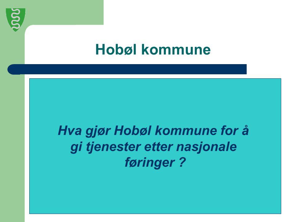Hobøl kommune Hva gjør Hobøl kommune for å gi tjenester etter nasjonale føringer