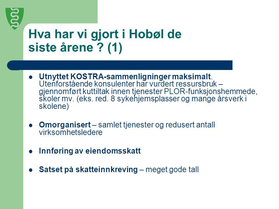 Hva har vi gjort i Hobøl de siste årene ? (1) Utnyttet KOSTRA-sammenligninger maksimalt. Utenforstående konsulenter har vurdert ressursbruk – gjennomf