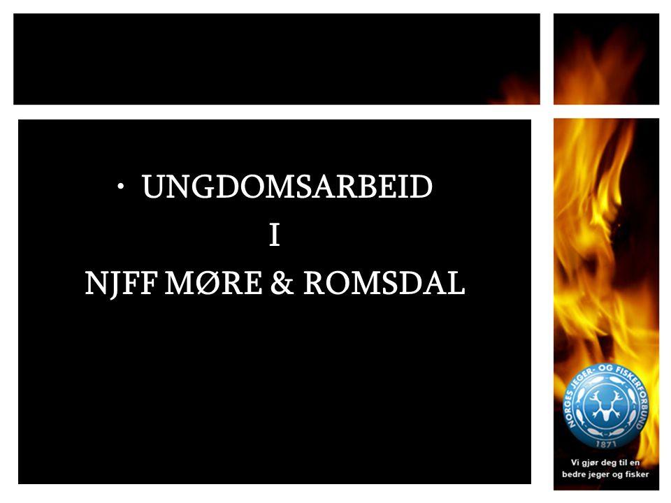 UNGDOMSARBEID I NJFF MØRE & ROMSDAL