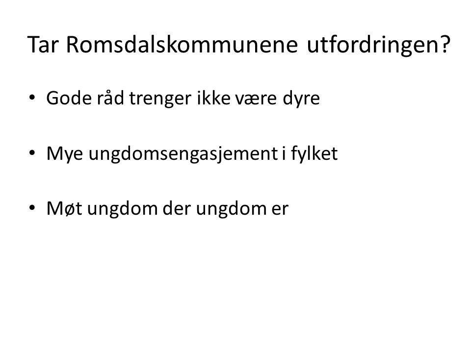 Tar Romsdalskommunene utfordringen? Gode råd trenger ikke være dyre Mye ungdomsengasjement i fylket Møt ungdom der ungdom er