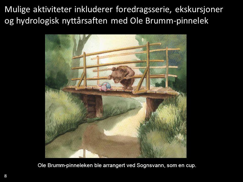 8 Mulige aktiviteter inkluderer foredragsserie, ekskursjoner og hydrologisk nyttårsaften med Ole Brumm-pinnelek Ole Brumm-pinneleken ble arrangert ved Sognsvann, som en cup.