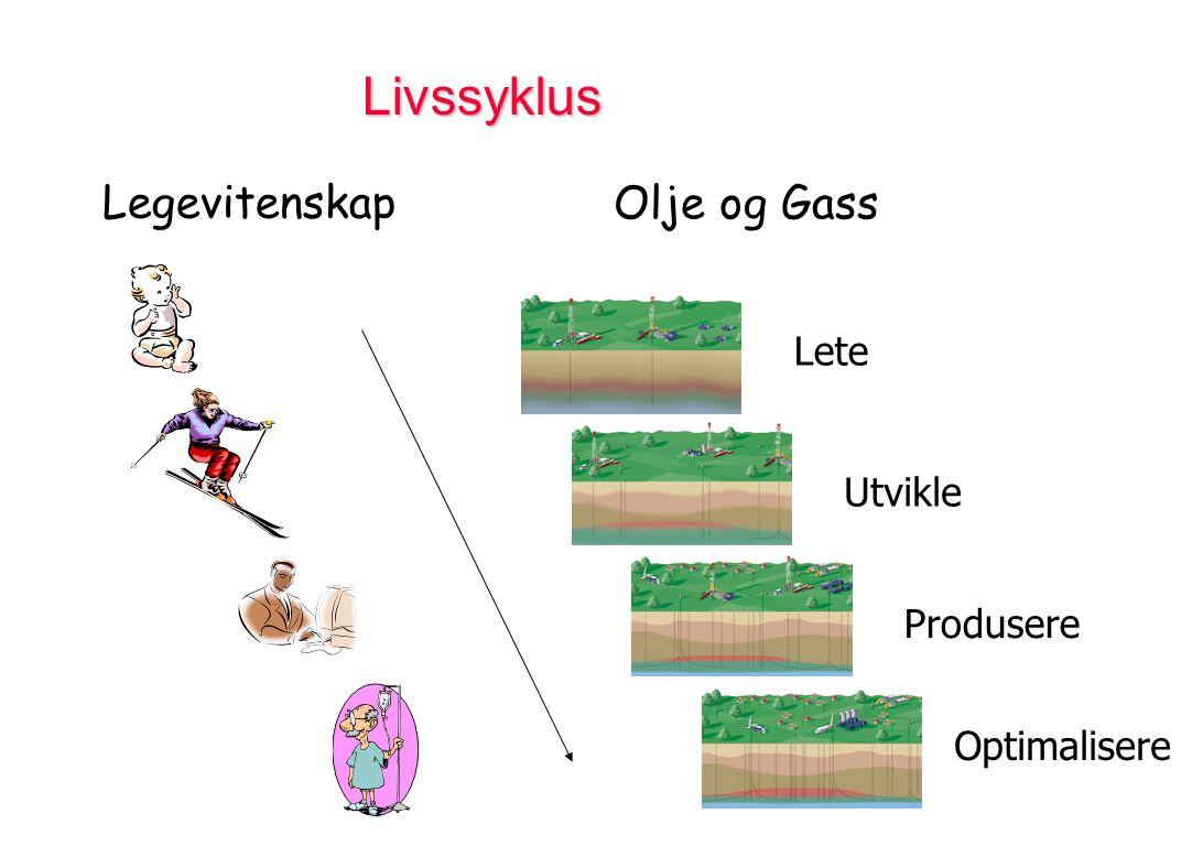 Livssyklus Lete Utvikle Produsere Optimalisere Legevitenskap Olje og Gass