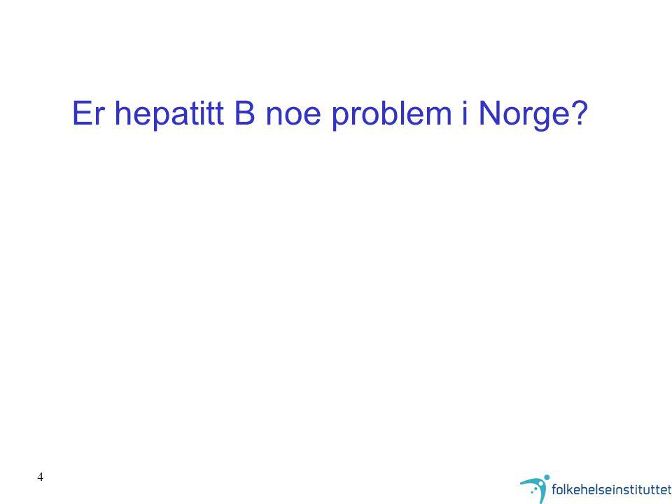 4 Er hepatitt B noe problem i Norge?