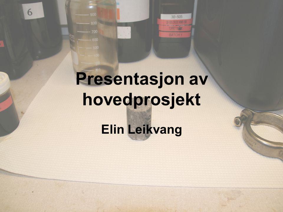 Presentasjon av hovedprosjekt Elin Leikvang
