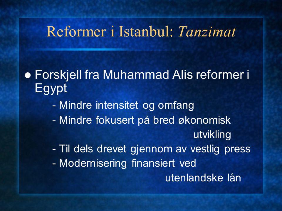 Reformer i Istanbul: Tanzimat Forskjell fra Muhammad Alis reformer i Egypt - Mindre intensitet og omfang - Mindre fokusert på bred økonomisk utvikling