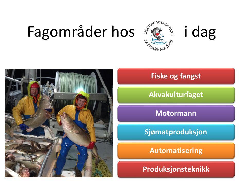 Fagområder hos i dag Fiske og fangstAkvakulturfagetMotormannSjømatproduksjonAutomatiseringProduksjonsteknikk