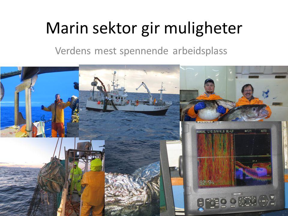 Marin sektor gir muligheter Verdens mest spennende arbeidsplass