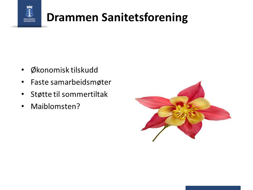 Drammen Sanitetsforening Økonomisk tilskudd Faste samarbeidsmøter Støtte til sommertiltak Maiblomsten?