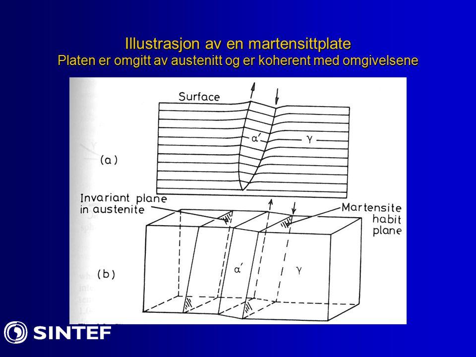 Grenseflatestruktur til martensitt Observasjoner viser: Man kan ha slip-plan med grenseflate dislokasjoner.