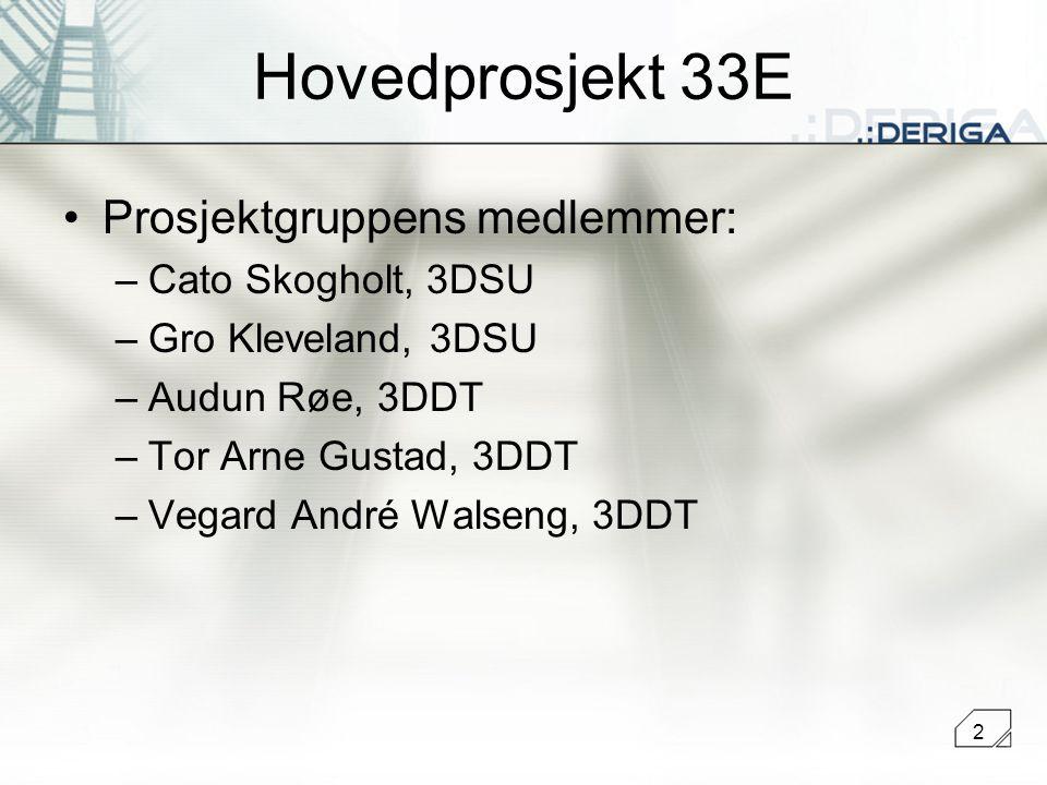 2 Hovedprosjekt 33E Prosjektgruppens medlemmer: –Cato Skogholt, 3DSU –Gro Kleveland, 3DSU –Audun Røe, 3DDT –Tor Arne Gustad, 3DDT –Vegard André Walseng, 3DDT