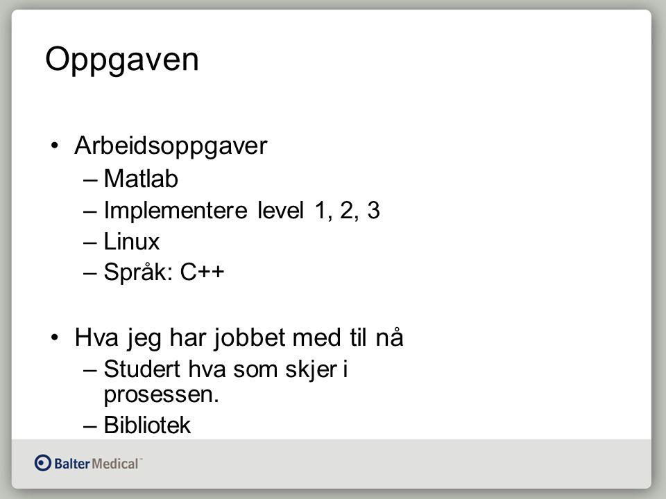 Oppgaven Arbeidsoppgaver –Matlab –Implementere level 1, 2, 3 –Linux –Språk: C++ Hva jeg har jobbet med til nå –Studert hva som skjer i prosessen.
