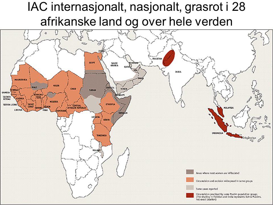 IAC internasjonalt, nasjonalt, grasrot i 28 afrikanske land og over hele verden