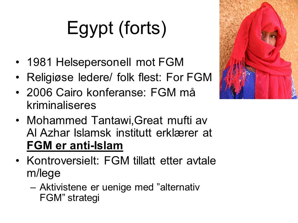 Egypt (forts) 1981 Helsepersonell mot FGM Religiøse ledere/ folk flest: For FGM 2006 Cairo konferanse: FGM må kriminaliseres Mohammed Tantawi,Great mufti av Al Azhar Islamsk institutt erklærer at FGM er anti-Islam Kontroversielt: FGM tillatt etter avtale m/lege –Aktivistene er uenige med alternativ FGM strategi