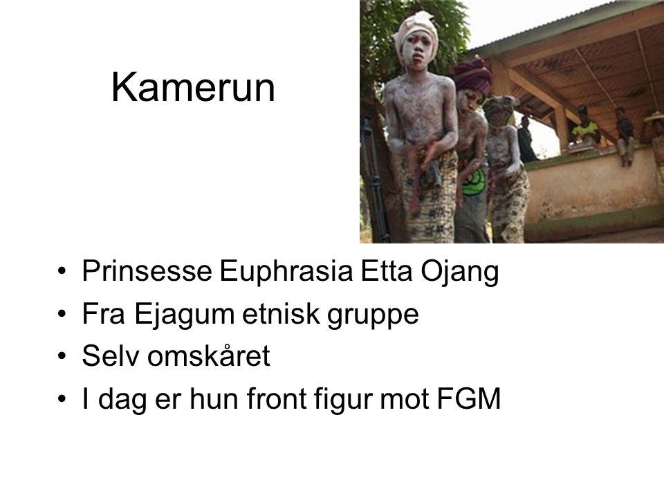 Kamerun Prinsesse Euphrasia Etta Ojang Fra Ejagum etnisk gruppe Selv omskåret I dag er hun front figur mot FGM