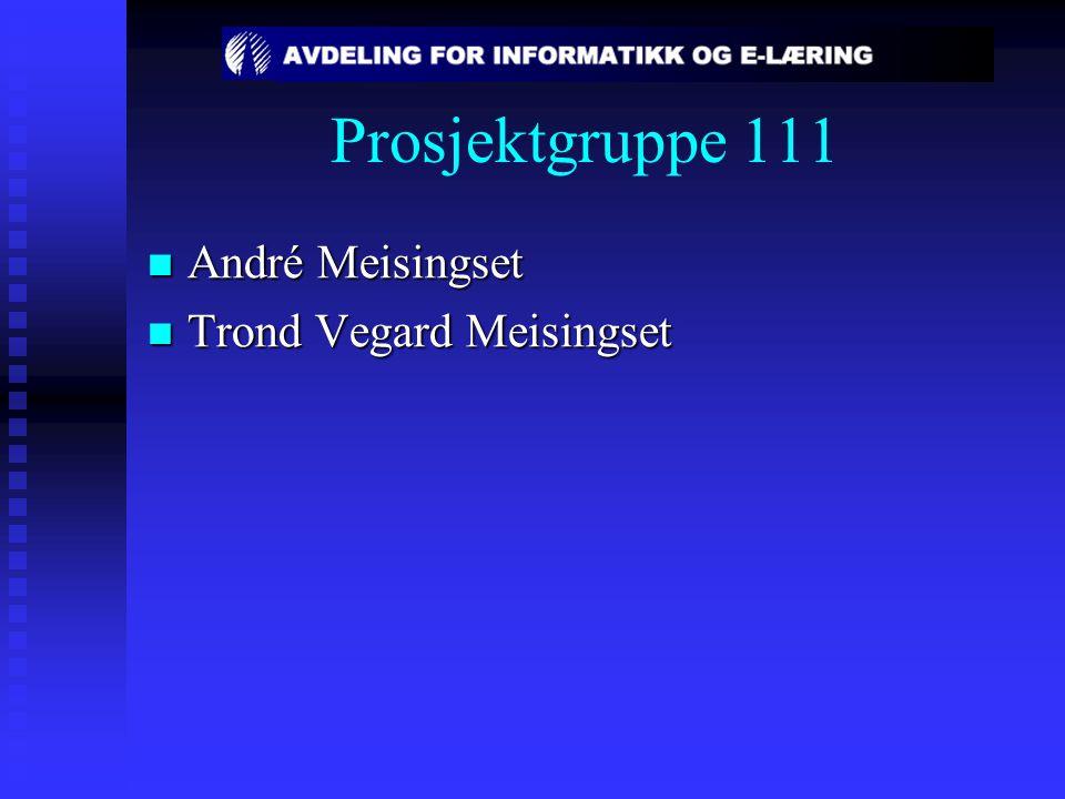 Prosjektgruppe 111 André Meisingset André Meisingset Trond Vegard Meisingset Trond Vegard Meisingset