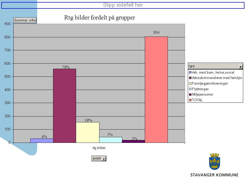 Rtg bilder fordelt på grupper 804 4% 70% 19% 5% 2%
