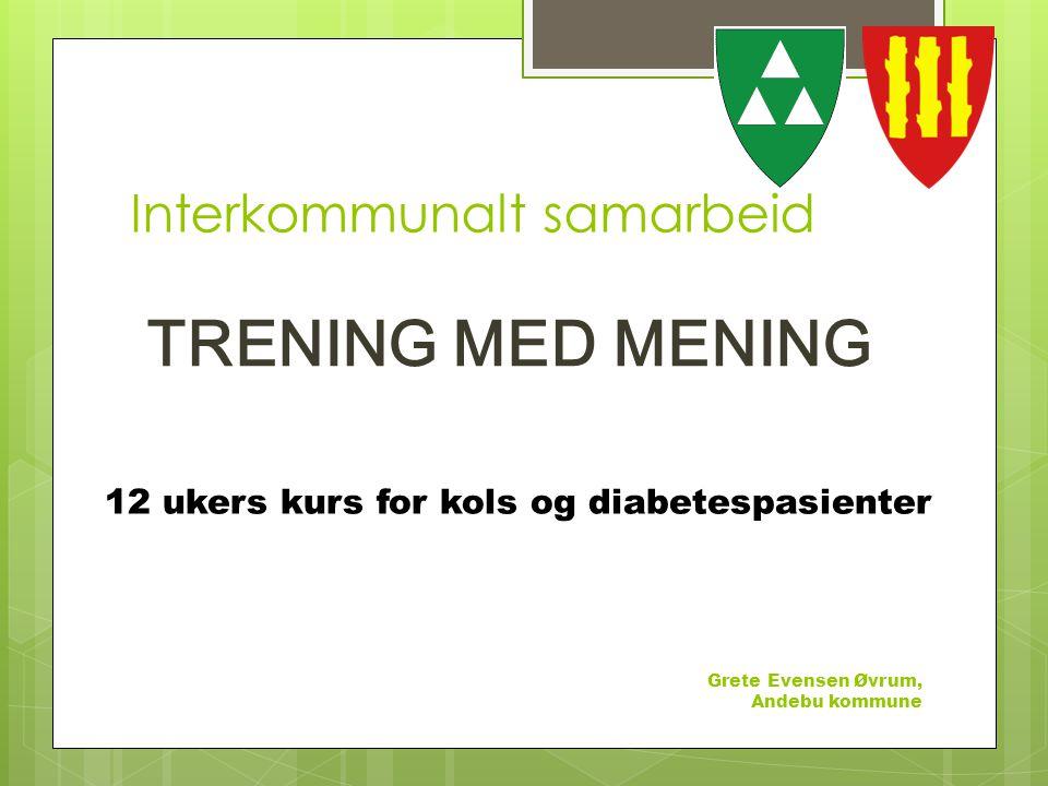 Interkommunalt samarbeid Grete Evensen Øvrum, Andebu kommune TRENING MED MENING 12 ukers kurs for kols og diabetespasienter