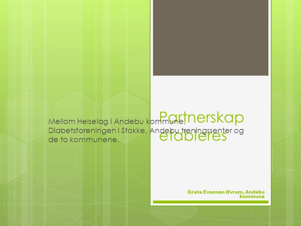 Partnerskap etableres Mellom Helselag i Andebu kommune, Diabetsforeningen i Stokke, Andebu treningssenter og de to kommunene.