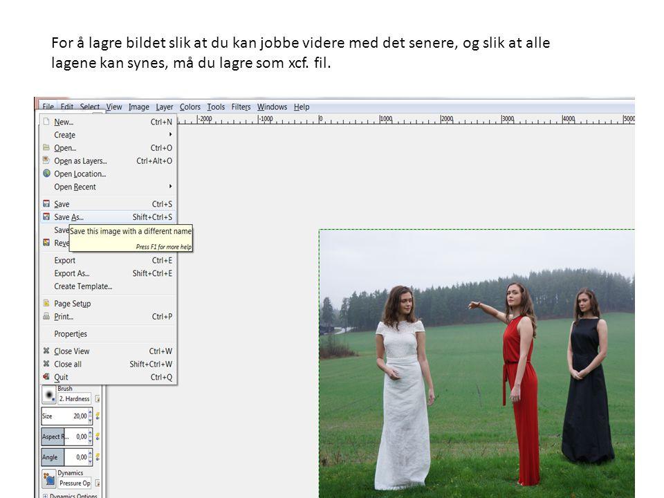 For å lagre bildet slik at du kan jobbe videre med det senere, og slik at alle lagene kan synes, må du lagre som xcf. fil.