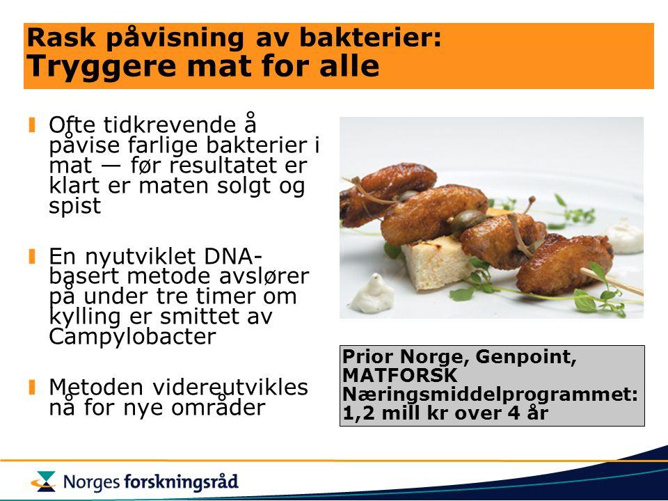 Rask påvisning av bakterier: Tryggere mat for alle Ofte tidkrevende å påvise farlige bakterier i mat — før resultatet er klart er maten solgt og spist En nyutviklet DNA- basert metode avslører på under tre timer om kylling er smittet av Campylobacter Metoden videreutvikles nå for nye områder Prior Norge, Genpoint, MATFORSK Næringsmiddelprogrammet: 1,2 mill kr over 4 år