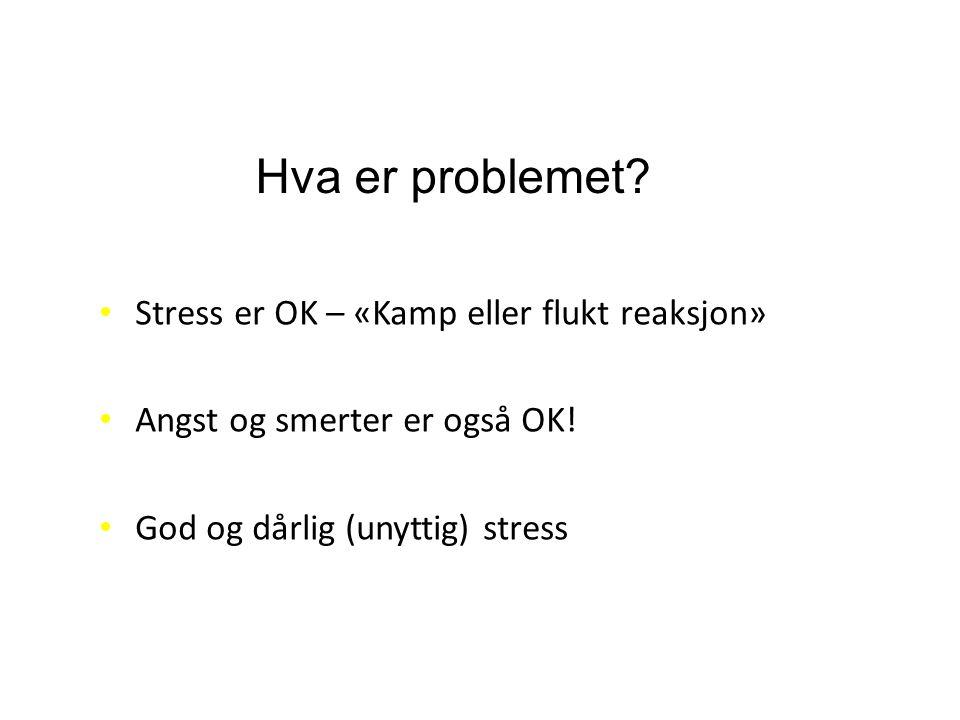God Stress! «Kamp eller flukt reaksjon»