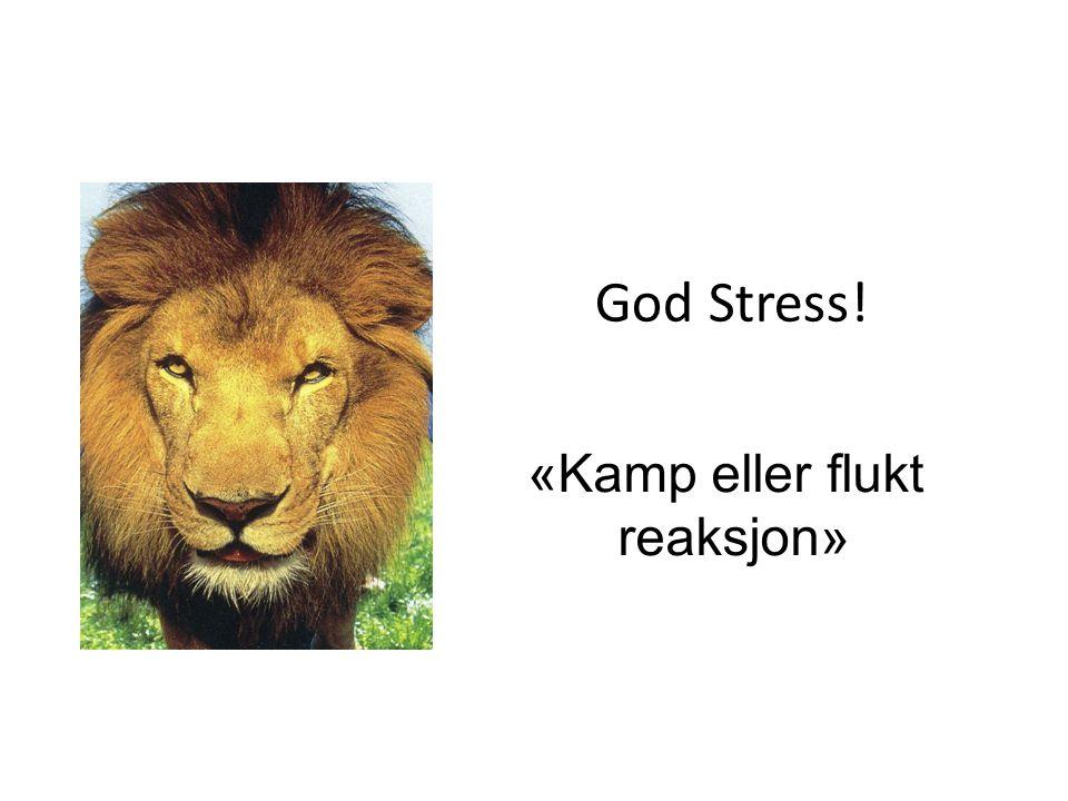 Stress spiralen