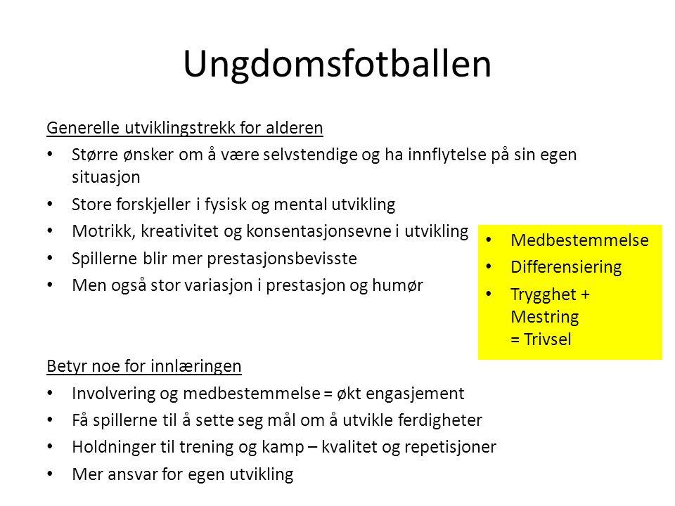 Spillergruppa -20 jenter har meldt seg på Kjell Carson Andreas Johnsen Tarjei Olaussen Håvard Kjeldstad Roger Johansen Alf-Petter Tenfjord
