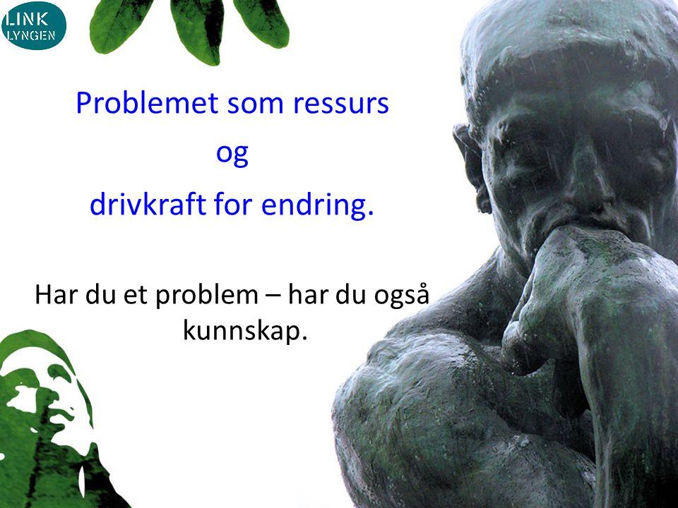 Problemet som ressurs og drivkraft for endring. Har du et problem – har du også kunnskap.