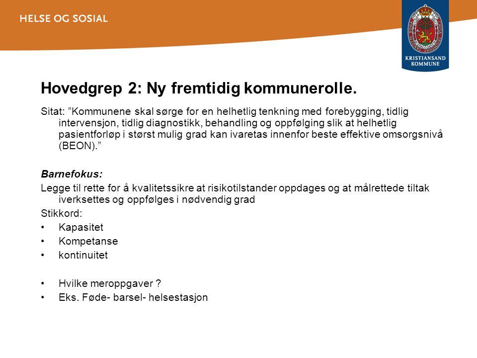 Hovedgrep 2: Ny fremtidig kommunerolle.