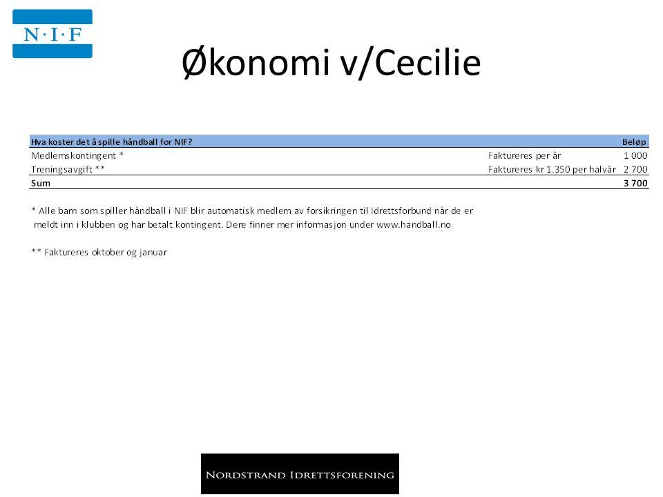 Økonomi v/Cecilie