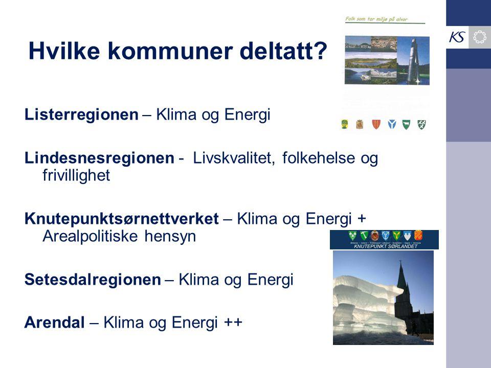 Hvilke kommuner deltatt? Listerregionen – Klima og Energi Lindesnesregionen - Livskvalitet, folkehelse og frivillighet Knutepunktsørnettverket – Klima