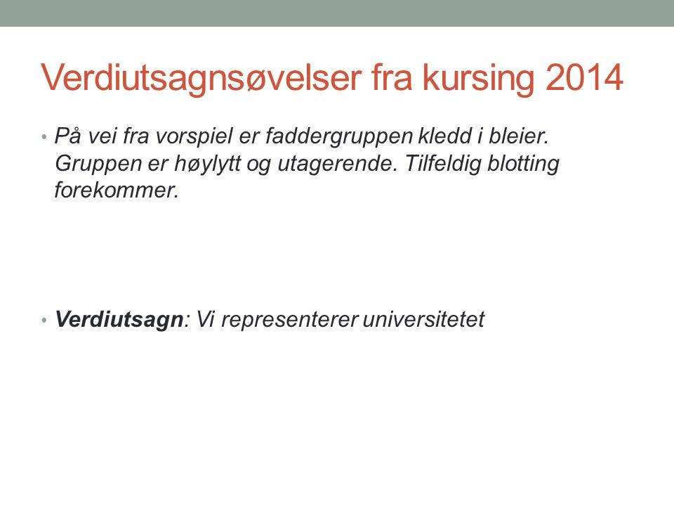 Verdiutsagnsøvelser fra kursing 2014 På vei fra vorspiel er faddergruppen kledd i bleier. Gruppen er høylytt og utagerende. Tilfeldig blotting forekom
