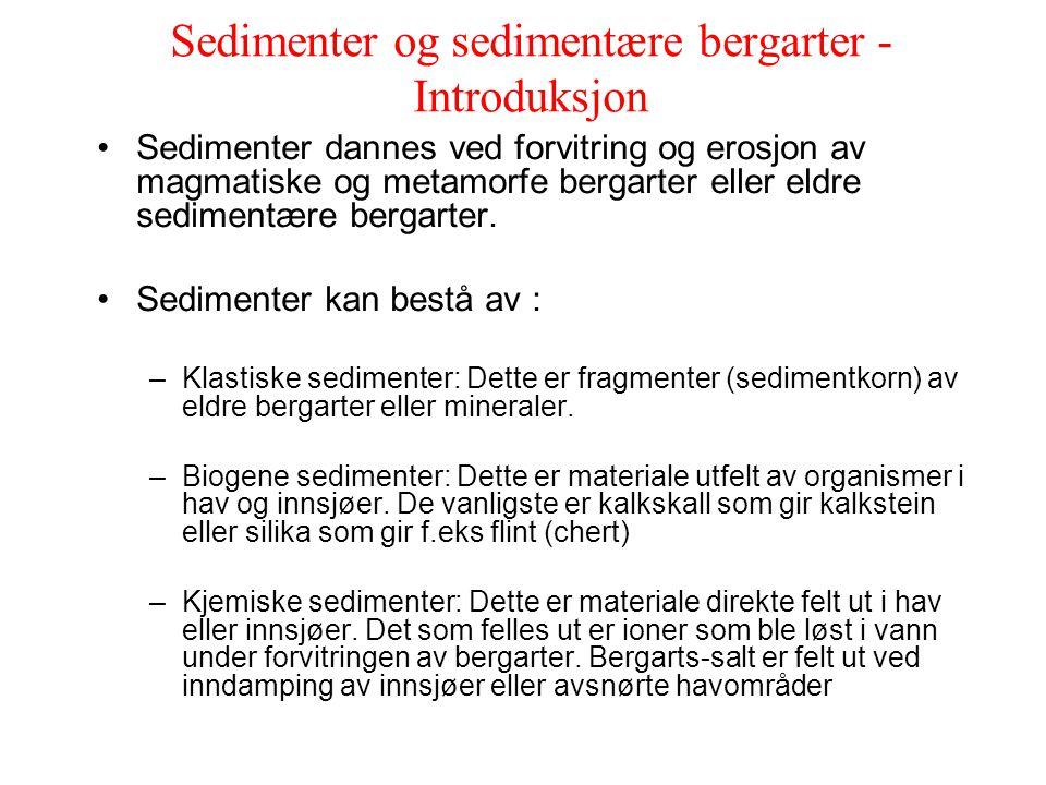 Sedimenter og sedimentære bergarter - Introduksjon Sedimenter dannes ved forvitring og erosjon av magmatiske og metamorfe bergarter eller eldre sedime