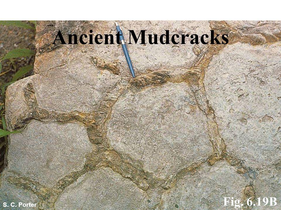 S. C. Porter Ancient Mudcracks Fig. 6.19B