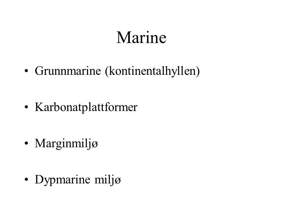 Marine Grunnmarine (kontinentalhyllen) Karbonatplattformer Marginmiljø Dypmarine miljø