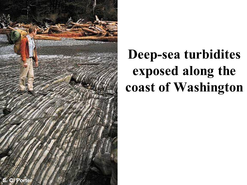Deep-sea turbidites exposed along the coast of Washington S. C. Porter Fig. 6.27