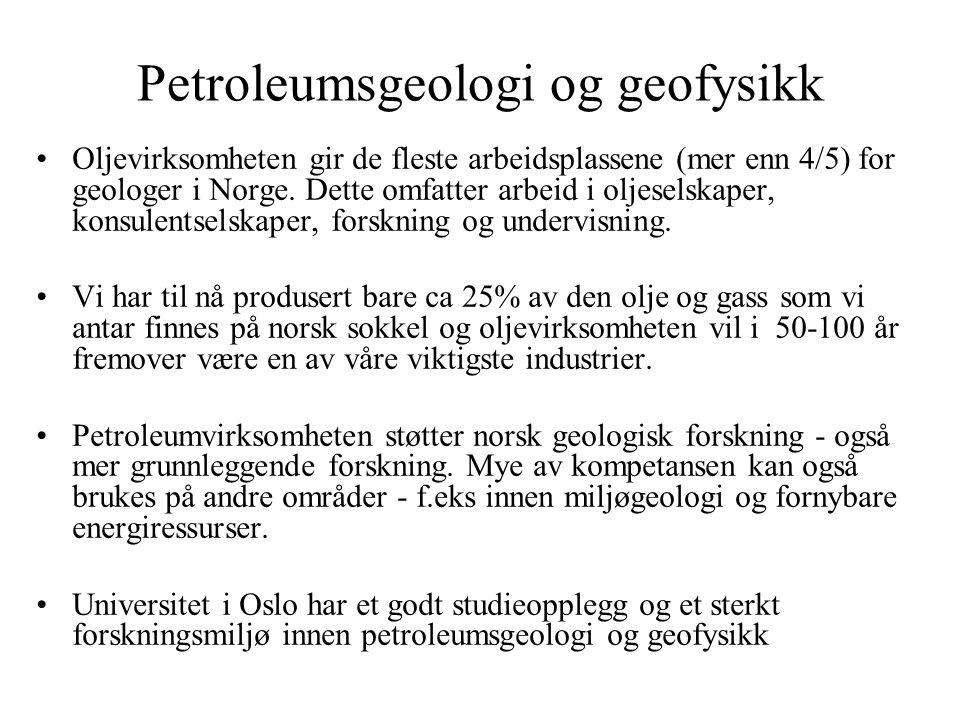 Petroleumsgeologi og geofysikk Oljevirksomheten gir de fleste arbeidsplassene (mer enn 4/5) for geologer i Norge. Dette omfatter arbeid i oljeselskape