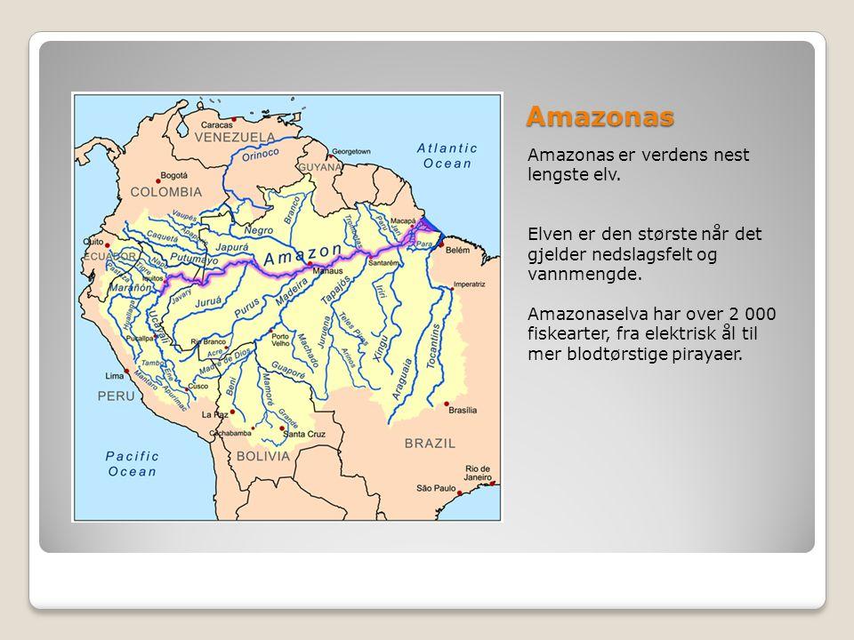 Amazonas Amazonas er verdens nest lengste elv. Elven er den største når det gjelder nedslagsfelt og vannmengde. Amazonaselva har over 2 000 fiskearter