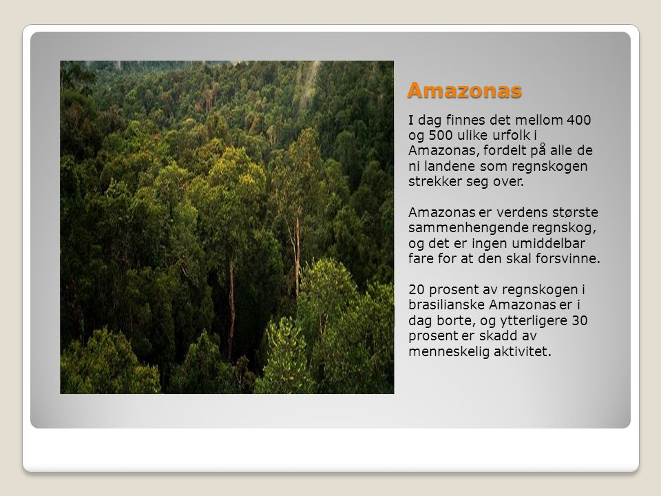 Amazonas I dag finnes det mellom 400 og 500 ulike urfolk i Amazonas, fordelt på alle de ni landene som regnskogen strekker seg over. Amazonas er verde