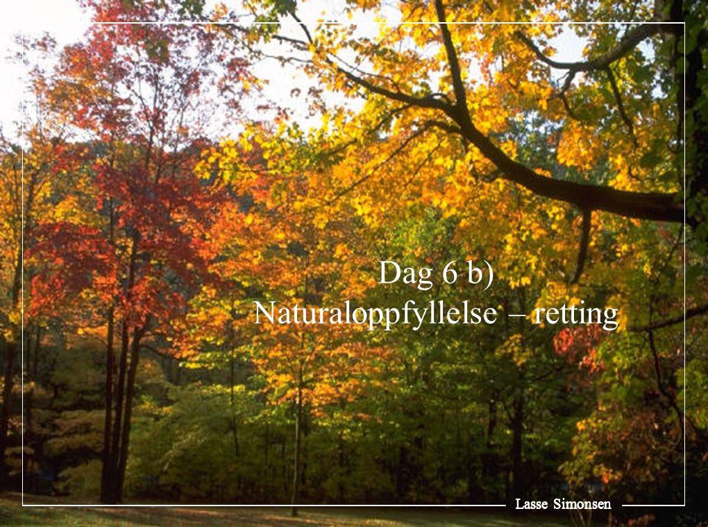 Lasse Simonsen Dag 6 b) Naturaloppfyllelse – retting Lasse Simonsen