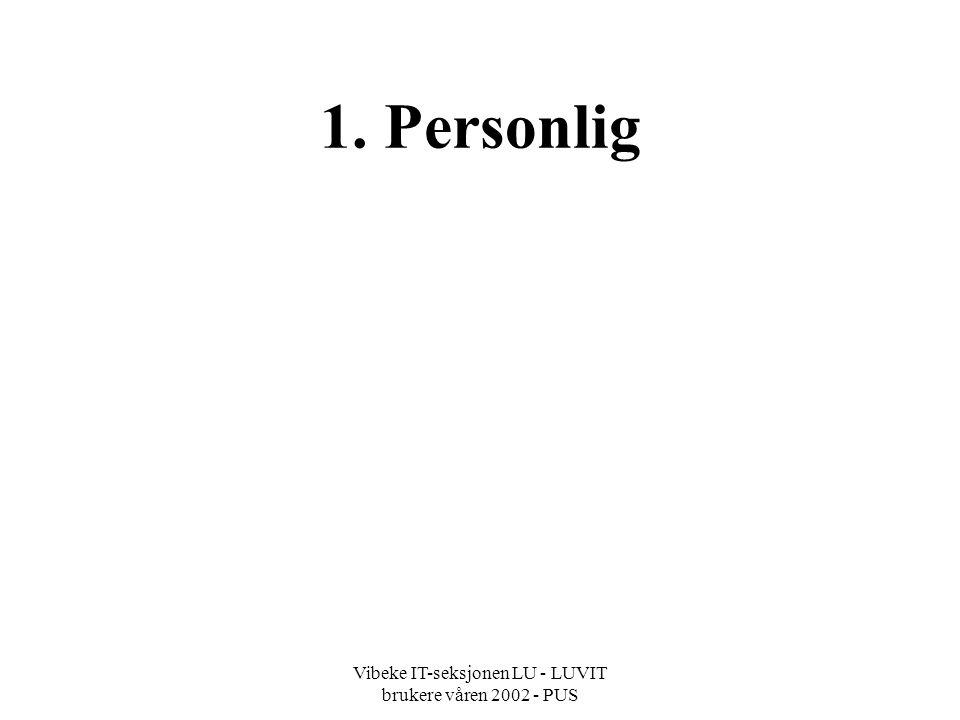 Vibeke IT-seksjonen LU - LUVIT brukere våren 2002 - PUS 1. Personlig