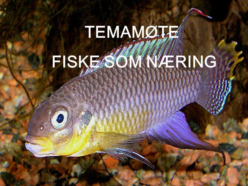 TEMAMØTE FISKE SOM NÆRING