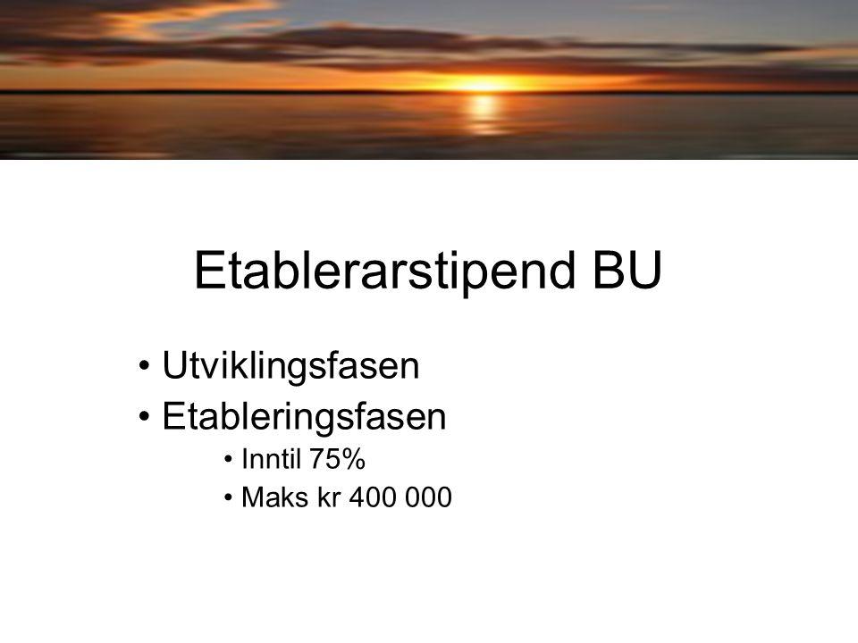 Etablerarstipend BU Utviklingsfasen Etableringsfasen Inntil 75% Maks kr 400 000