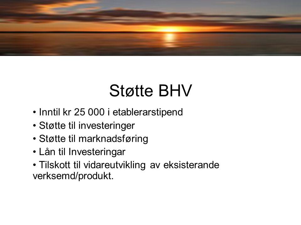Fiske som næring Gi råd i samband med utvikling av forretningsplan m.m Hjelp i samband med utarbeidelse av søknad om støtte Eks.
