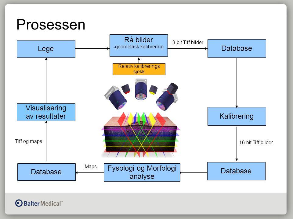 Prosessen Lege Rå bilder -geometrisk kalibrering Database Kalibrering Database Fysologi og Morfologi analyse Visualisering av resultater 16-bit Tiff bilder 8-bit Tiff bilder Maps Tiff og maps Lege Relativ kalibrerings sjekk