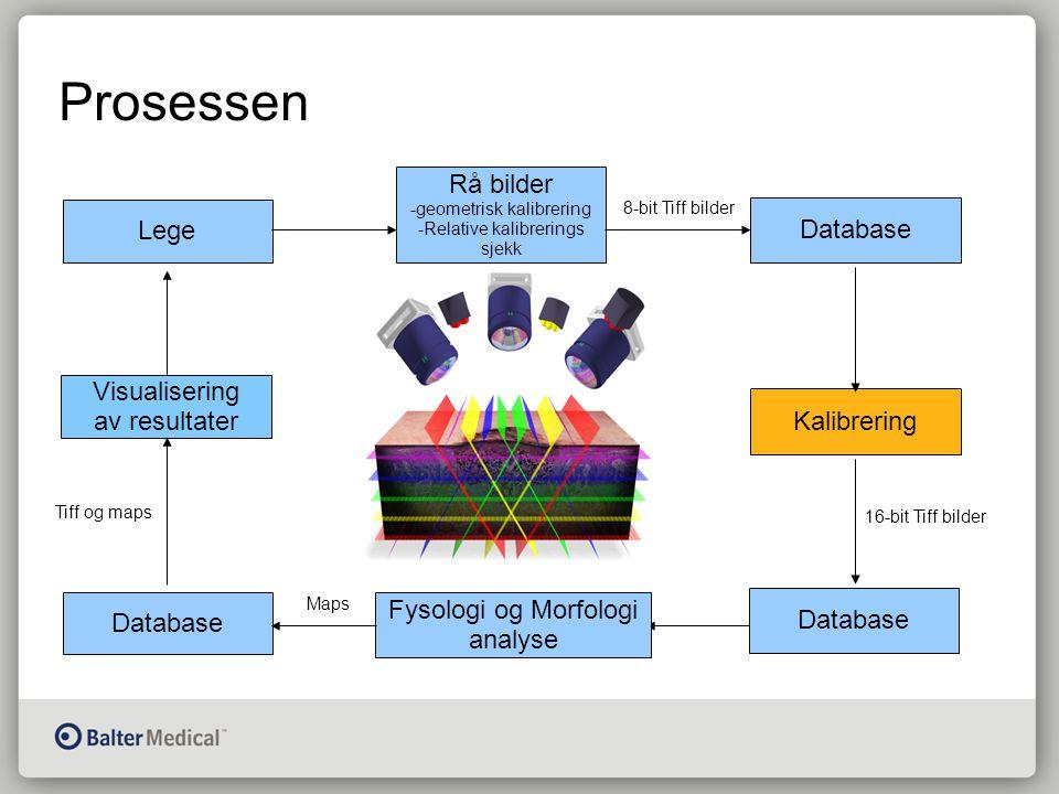 Prosessen Lege Rå bilder -geometrisk kalibrering -Relative kalibrerings sjekk Database Kalibrering Database Fysologi og Morfologi analyse Visualisering av resultater 16-bit Tiff bilder 8-bit Tiff bilder Maps Tiff og maps