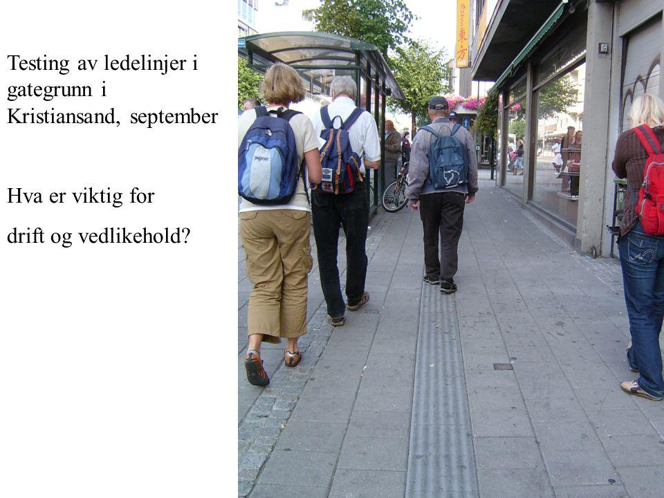 Testing av ledelinjer i gategrunn i Kristiansand, september Hva er viktig for drift og vedlikehold