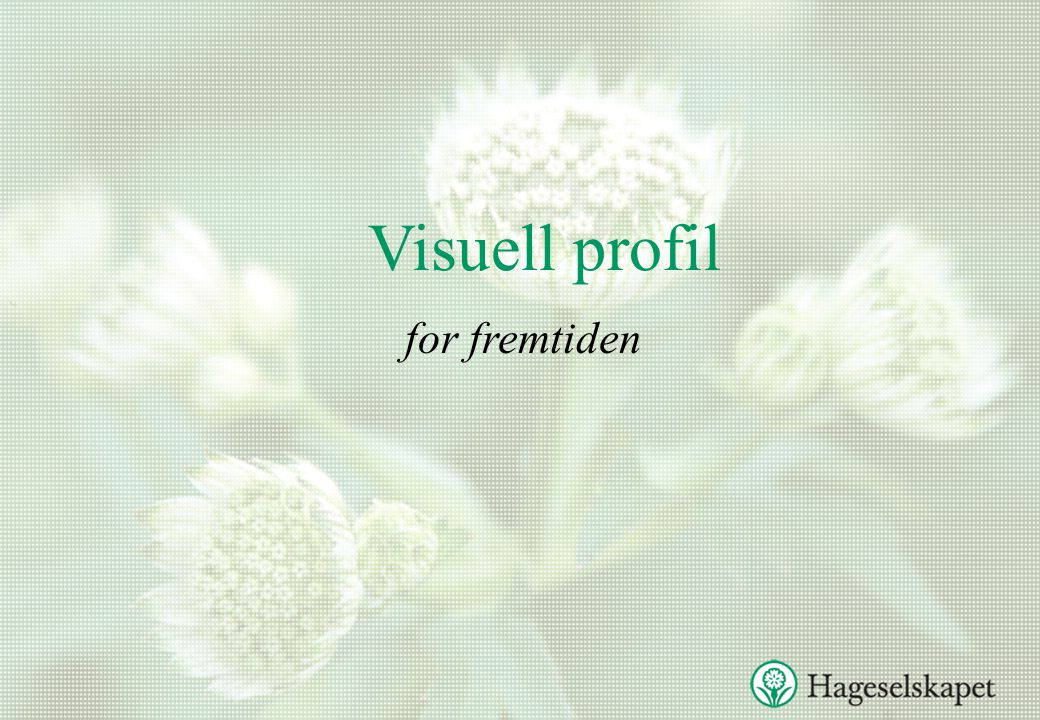 Visuell profil for fremtiden
