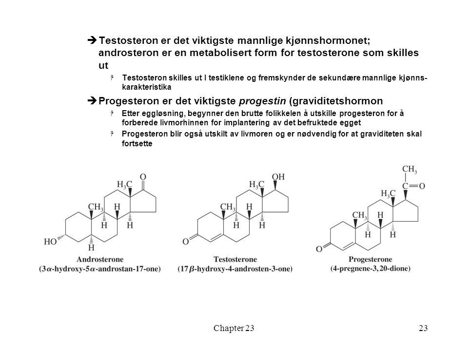 Chapter 2323  Testosteron er det viktigste mannlige kjønnshormonet; androsteron er en metabolisert form for testosterone som skilles ut  Testosteron